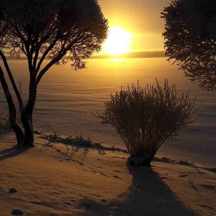 Invierno en Finlandia. El punto más alto de subida del sol es en el horizonte unas horas al día